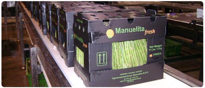 Comprar Espárragos Manuelita Fresh