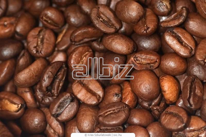 Comprar Café robusto