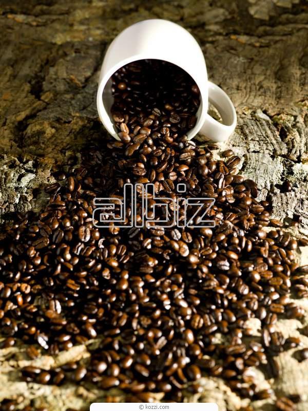 Comprar Café orgánico