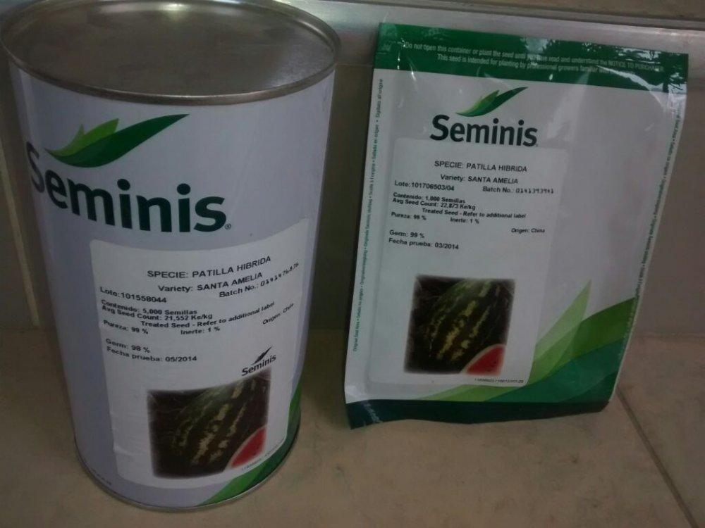 Comprar Semilla de patilla hibrida santa amelia