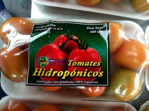 Comprar Tomate chonto hidroponicos
