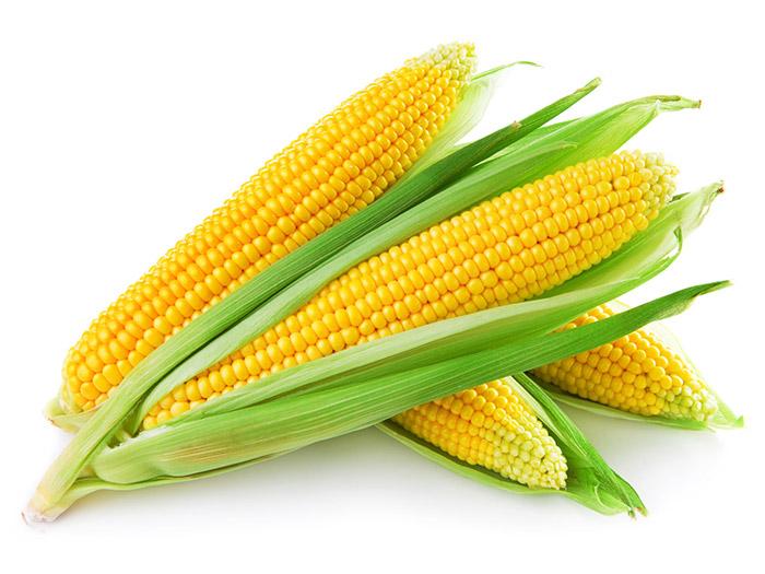 Comprar Mazorca Tierna en Bandeja - Sweet Corn