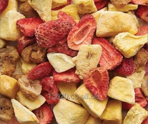 Comprar Frutas liofilizadas. Fresa, banano, piña, mango, mix, etc.