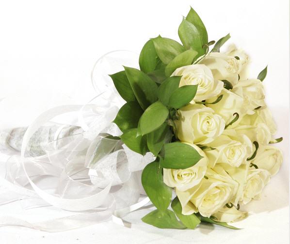 Comprar Rosas blancas