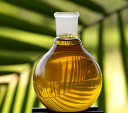 Comprar Aceite Crudo de Palma