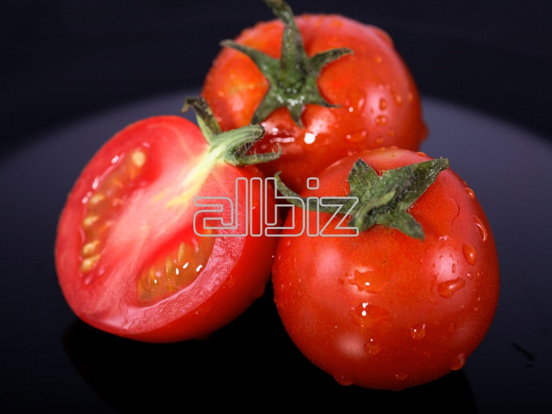 Comprar Tomates