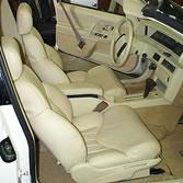 Leather car interior
