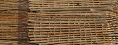 Madera Seca (Perillo)