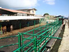 Corrales para manejo de ganado desde 50 hasta