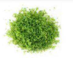 Harina de hierba