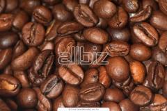 Café robusto