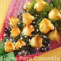 Rosas estrellas