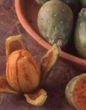 Cactusfigs