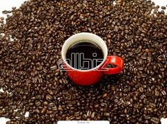 Organik kahvesi