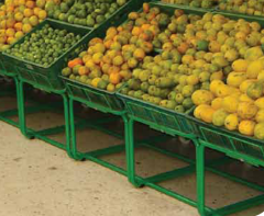 Exhibidor De Frutas y Verduras