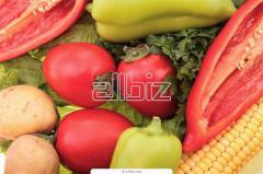 Productos de agricultura