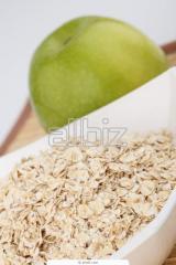 Cereales alimenticios