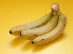 Plátanos