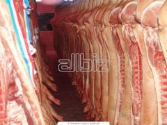 Carne de cerdo congelado