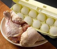 Pollos de carne y huevos