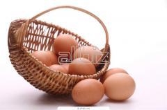 Productos de huevos