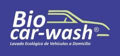 Hand steam car washes