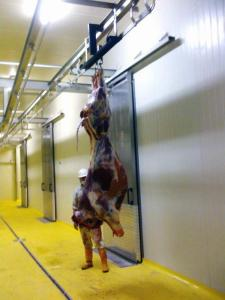 Scales for slaughter-houses suspended, monorail