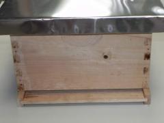 Colmena estanda, apiarios, apicultura, material apicola, miel, polen