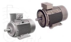 Motores Eléctricos Trifásicos
