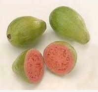 Guayava pera