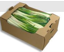 Cajas de cartón para productos