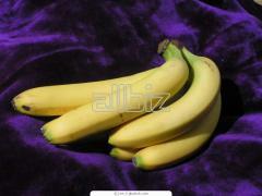 Banano Referencia Cavendis.