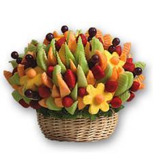 Jardin de Frutas