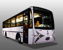 Autobuses Camino Escolar