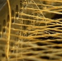 Hilos y Sogas de Fibras Naturales