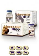 Veterinary antibiotics