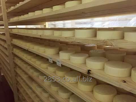 queso_paipa