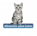 Alimentos para gatos Sabor de vida