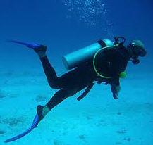 Pedido Diving