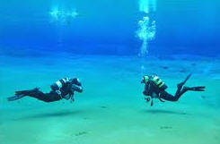 Order Diving