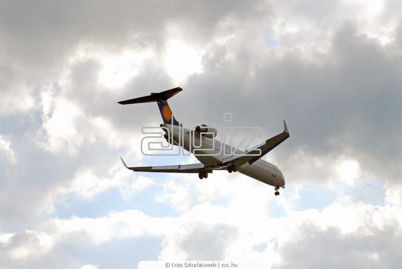 Pedido Transporte aereo charter