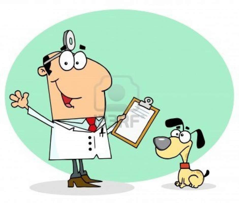 Pedido Consulta y valoración medica veterinaria