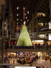 Viajes de Año Nuevo y Navidades