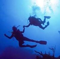 Cursos de diving