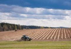 Alquiler de bienes raices agrícolas