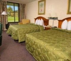 Habitaciones en el hotel: cuartos dobles de una habitación
