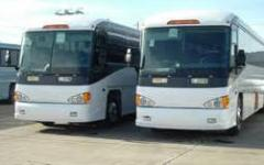 Servicios de agencias de transporte y expedicion