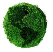 Publicidad ecológica