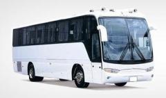 Transporte de pasajeros en lineas internacionales