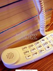 Servicio Telefónico